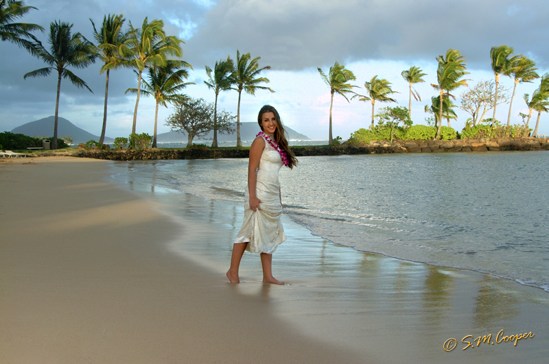 pei_pei_beach_hawaii_110-546